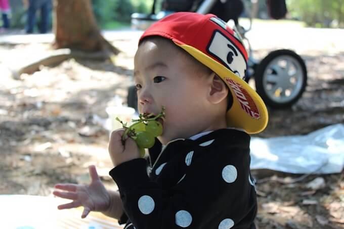 ぶどうを食べている男の子
