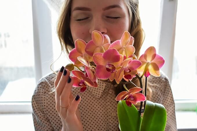 花を吸っている女性