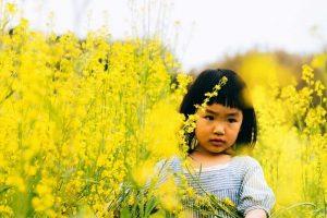 花畑と女の子