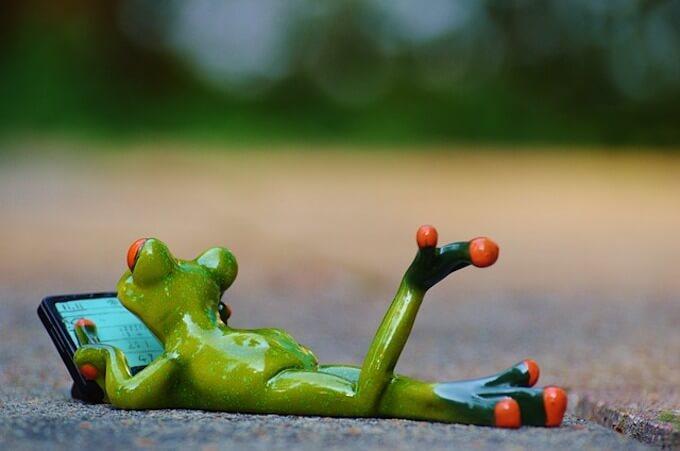 寝っ転がっているカエル